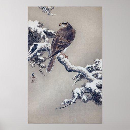 松に鷹, 古邨 Falke auf Kiefer, Ohara Koson, Holzschnitt Poster