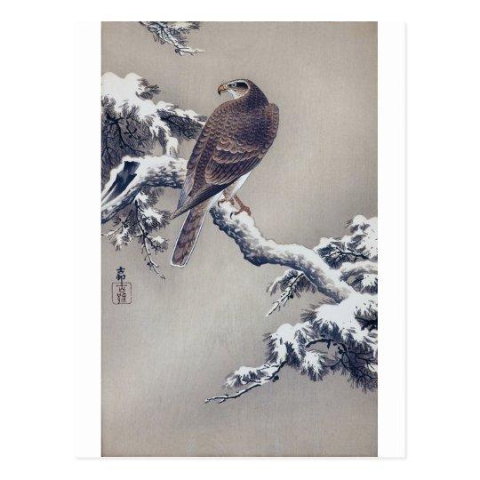 松に鷹, 古邨 Falke auf Kiefer, Ohara Koson, Holzschnitt Postkarte