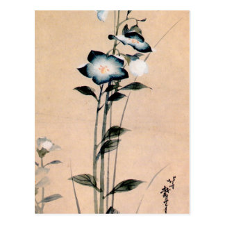 桔梗, 北斎 chinesische Glockenblume, Hokusai Ukiyo-e Postkarte