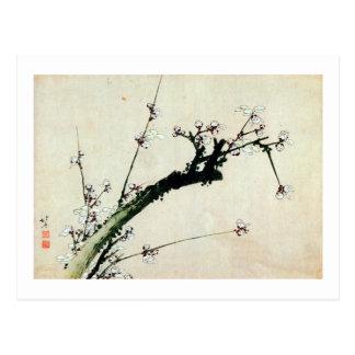 梅花, 北斎 Pflaume blüht, Hokusai, Ukiyo-e Postkarte