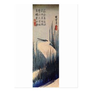 葦に白鷺, 広重 weißer Reiher und Schilf, Hiroshige, Postkarte