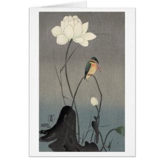蓮にカワセミ, 古邨 Eisvogel auf Lotus, Koson, Ukiyo-e Karte