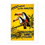 1000 Meilen herauf das Vintage Reise-Plakat