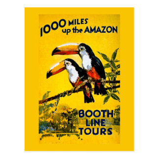 1000 Meilen herauf das Vintage Reise-Plakat Postkarte