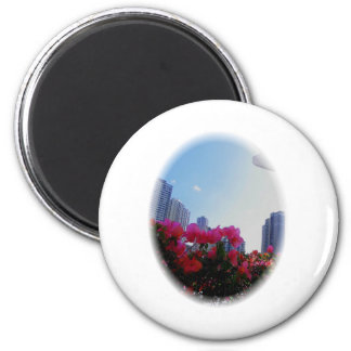 1001451bC.jpghaw Runder Magnet 5,7 Cm