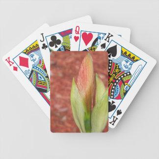 102a Amaryllis Apple blühen Knospe Bicycle Spielkarten