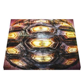 10. Muster; Schildkröte-Höhepunkte Leinwanddruck