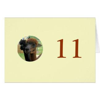 11. Geburtstag Karte