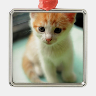 12965194_1722830224625278_1290136006_n silbernes ornament