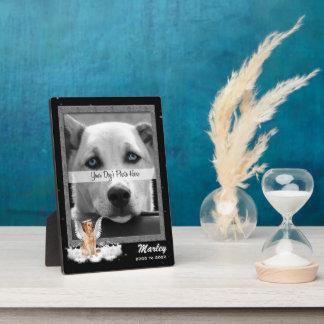 12x18 Zoll-Haustier-ErinnerungsFoto mit goldenem Fotoplatte