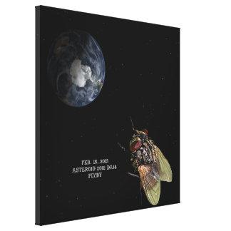 15. Februar 2013 Asteroid2012 Flyby DA14 Leinwand Drucke