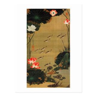 17 蓮池遊魚図 若冲 Teich mit Lotus Jakuchū Postkarte