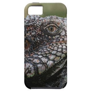 1920px-Iguanidae_head_from_Venezuela Etui Fürs iPhone 5