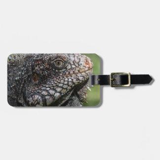 1920px-Iguanidae_head_from_Venezuela Gepäckanhänger