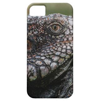 1920px-Iguanidae_head_from_Venezuela iPhone 5 Schutzhülle