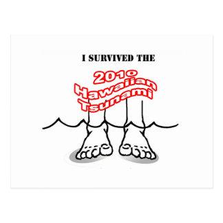 2010 Hawaiianer-Tsunami Postkarte