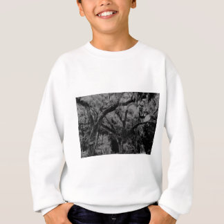 2013-06-30 028 bw.jpg sweatshirt