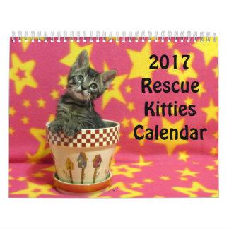 2017 Rettungs-Kätzchen-Kalender *** neu für 2017 Kalender