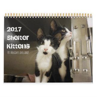 2017 Schutz-Kätzchen Wandkalender