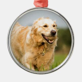 34520685_xxl rundes silberfarbenes ornament