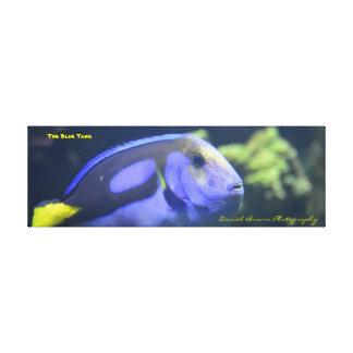 36x12x1.5 eingewickelter Leinwand-Foto-Blau-Geruch Leinwanddruck