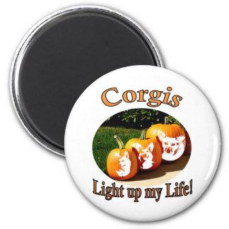 3 Corgis leuchten meinem Leben Magnets