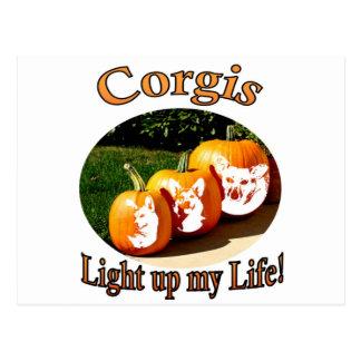 3 Corgis leuchten meinen Leben-Kürbisen Postkarten