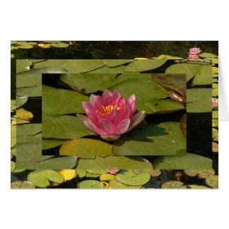 3-D Wasser-Lilie Karte