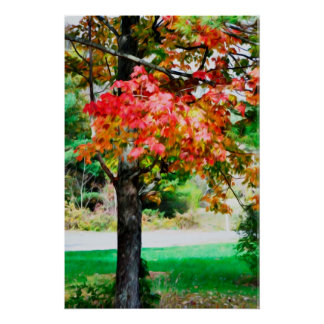 3 Farben der Natur 2 Poster