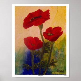 3 Mohnblumen Poster