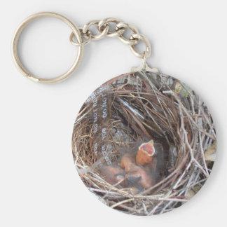 3 neugeborene Vogelbabys in einem Nest mit Schlüsselanhänger
