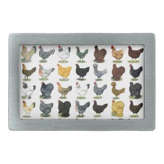 49 Huhn-Hennen Rechteckige Gürtelschnalle