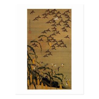 4 秋塘群雀図 若冲 Menge der Spatzen Jakuchū Postkarten