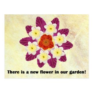 4 gibt es eine neue Blume in unserem Garten Postkarte