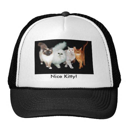 4 Katzen Kult Cap