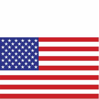 50-Star US Flagge Freistehende Fotoskulptur