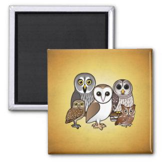 5 Birdorable Eulen Quadratischer Magnet