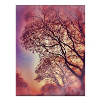 #6653 Tree Postkarte