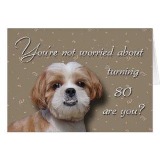80. Geburtstags-Hund Karte