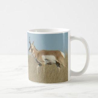 A0044 Pronghorn Antilopen-Dollars Kaffeetasse