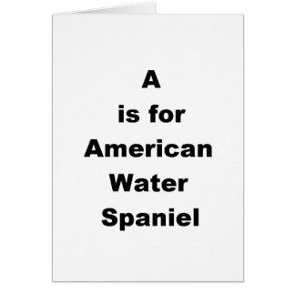 a ist für amerikanisches Wasser Spaniel Karte