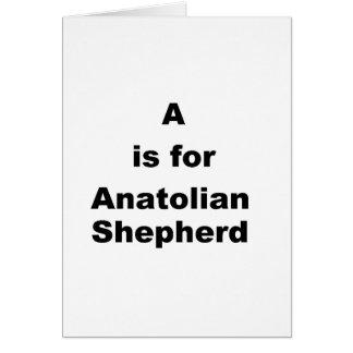 a ist für anatolischen Schäfer Karte