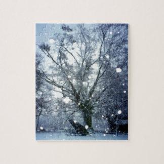 Abends-Schnee-Sturm im Land-Winter-Foto Puzzle