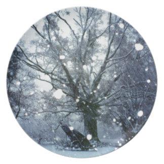 Abends-Schnee-Sturm im Land-Winter-Foto Teller