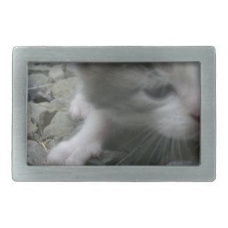 Abenteuer-Kätzchen Rechteckige Gürtelschnalle