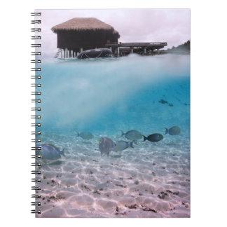 Abenteuer-Strand-Korallen-Fische Malediven Notizblock