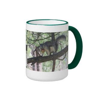 Aberts Eichhörnchen Kaffee Tasse