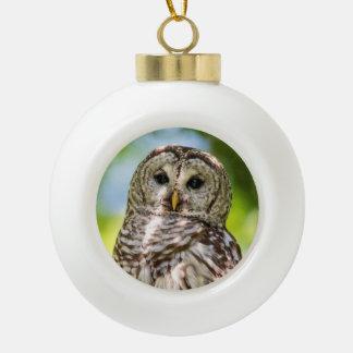 Abgehaltene Eule Keramik Kugel-Ornament