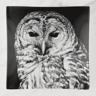 Abgehaltene Eulen-Gesichts-Vogel-Schwarzweiss-Foto Dekoschale