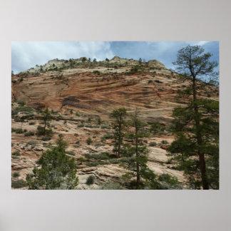 Abgenutzte Felsen-Wände in Zion Nationalpark Poster